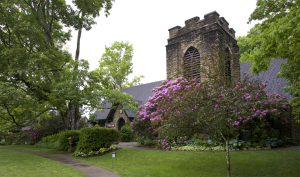 Rhododendron in Bloom, St. Mary of the Hills Episcopal Parish, Blowing Rock, NC